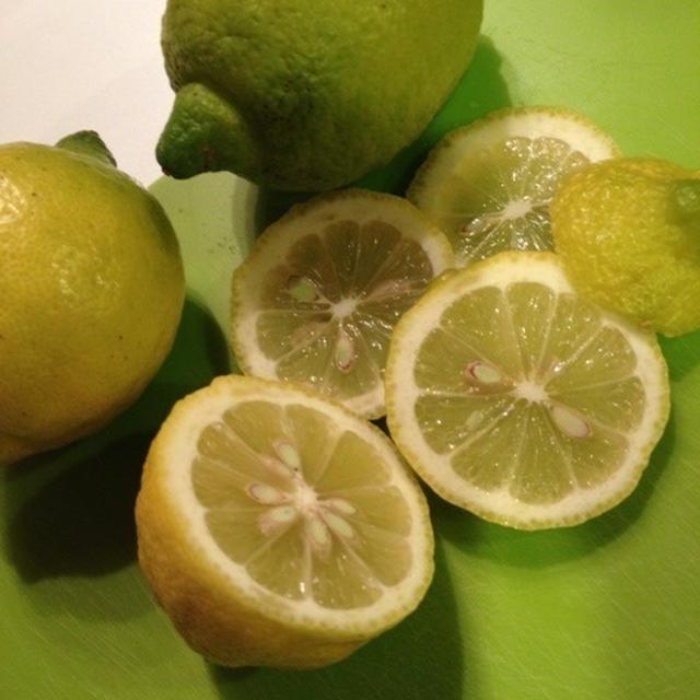 おいしい!牡蛎のレモン鍋、豚肉と根菜のレモン鍋〜小豆島産グリーンレモン(なかよし屋)で!