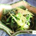 365日野菜レシピNo.104「つわとニラのごま油炒め」