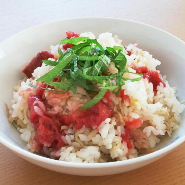 【レシピ】しらすネギご飯 *思い出のご飯
