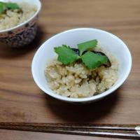 粉末ごぼう茶で作る、簡単炊き込みご飯のレシピ