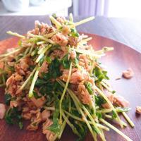【秘密の悪女キッチン】豆苗とシーチキンと鰹節の和風サラダ