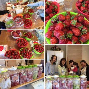 苺の酵素ジュース作り教室