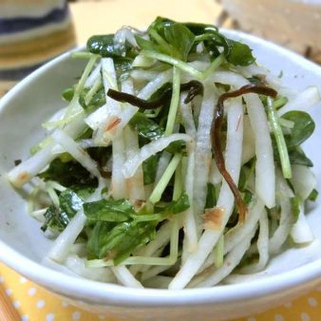 混ぜるほど味しみしみで減塩も♪ 大根と豆苗のサラダ