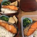 鮭弁当とサムギョプサル