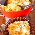 行楽シーズン 減塩しょうゆでおかわり続出! 鶏ごぼう入り炊き込みごはん  自家製調味料の作り方付  - 鮮度の一滴+白だし×豊菜JIKAN -