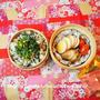 なんちゃってちらし寿司と鮭のホイル焼き弁当