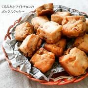 お姉さんと自信作のクッキー2種