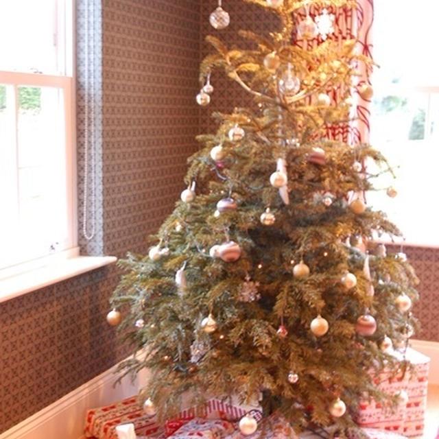 クリスマスDAY♪