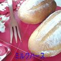 普通のパンの いつもの生地