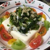旬のイカナゴたっぷり豆腐のグレインズサラダ。