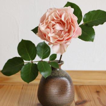 薔薇の花&親子3代のお弁当