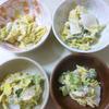 白菜の胡麻マヨ和え