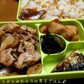 新生姜たっぷりの豚肉生姜焼き✖︎鶏肉唐揚げ✖︎塩サバ弁当♪