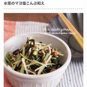 サラダに和え物、漬け物にも♪水菜×塩こんぶのおすすめ簡単おかず