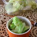 素材一品だけレシピ、やみつきキャベツのエビ風味
