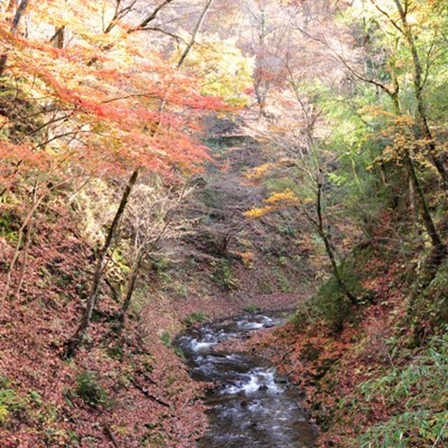 長野・城下町 上田 と 紅葉と