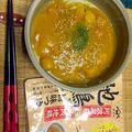 5分でうまうま! 冷やし鶏カレーうどん 地鶏旨味つゆ  #夏麺  #金魚の肴