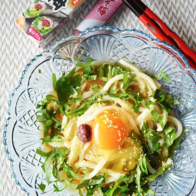 火を使わず簡単 3分ランチ! しそ梅冷やしうどん - スパイス大使 -  金魚の肴2015イチオシ夏麺その9