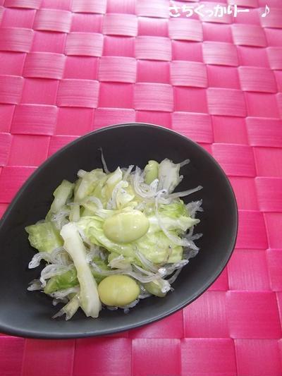 じゃこ&キャベツ&枝豆の簡単サラダ