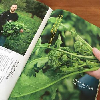 プーリアの冬野菜。