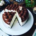 ティラミス色々❤️と、混ぜて冷してめちゃ簡単♪あっという間にティラミスケーキ♪
