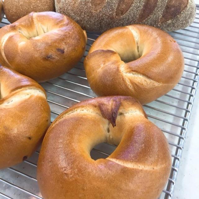 【保存版】パン作りにおすすめのオーブン