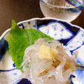 春の白魚でひとり呑み〜刺身、かき揚げ、卵とじ