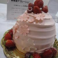 西武食品館【さくらまつり】試食会