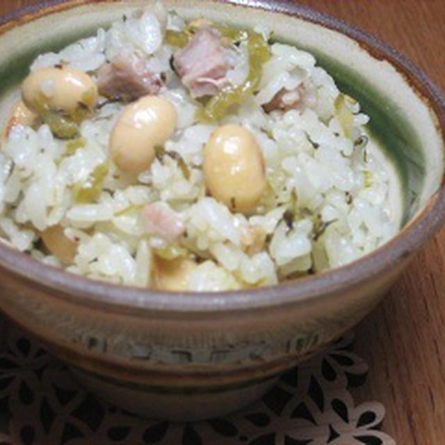大豆と高菜の炊き込みご飯【ビタクラフトモニター記事】
