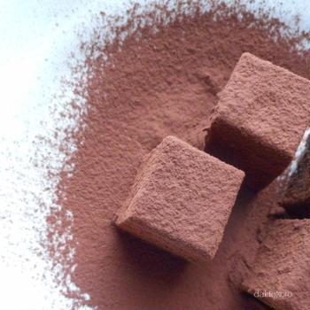 乳製品・チョコレート不使用 オーツ麦ミルクの生チョコ風