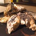 牡蠣の季節☆牡蠣小屋フィーバーで牡蠣まみれ