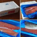 北海道産生秋鮭 de 味噌漬け・こうじ漬け・オイル漬けなど