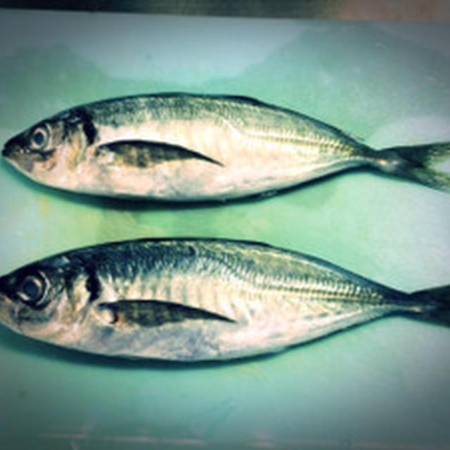 Namerou style Minced Horse mackerel☆ なめろうを作ってみたよ☆