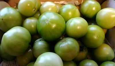 保存食作り♪青トマトのカレーピクルス