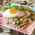 塩レモン鶏肉のバジル炒め ガパオライス