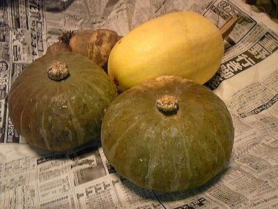 レンコンと長いもの柚子胡椒ハンバーグ