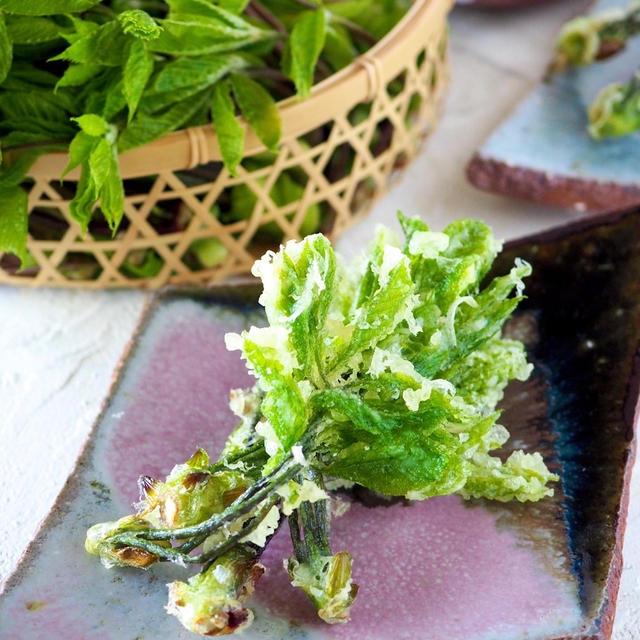 【天ぷら粉以上の自家製天ぷら粉】天ぷら粉なくても、山菜天ぷら