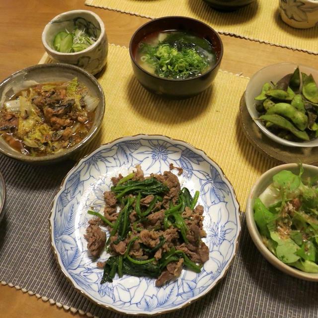 牛肉と法蓮草のシンプル炒めなど和の晩ご飯 と 銅葉ヒマ♪
