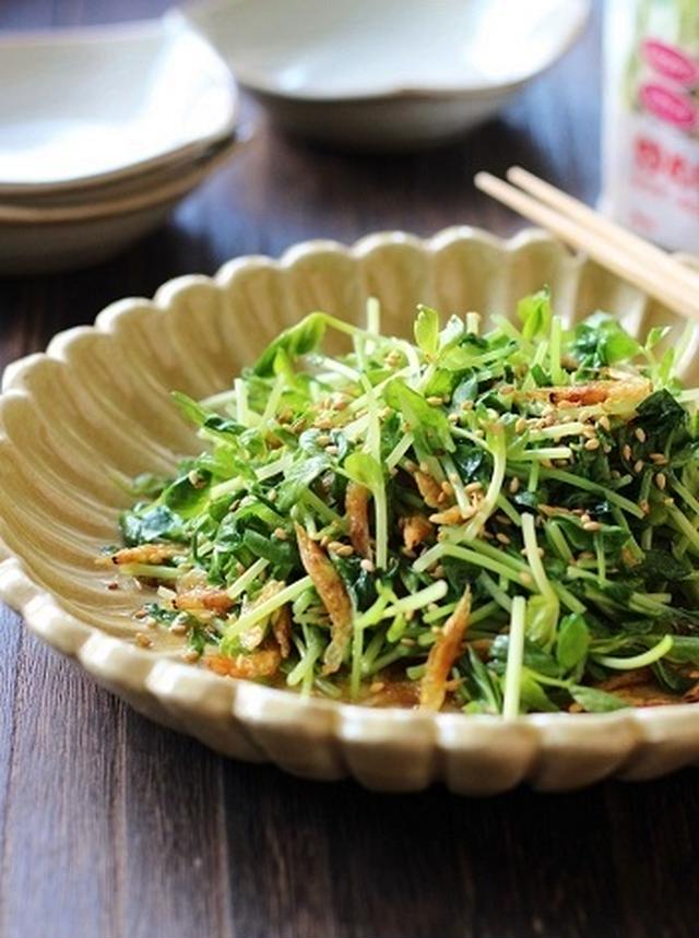 お皿に盛られたた豆苗と桜えびの炒めもの