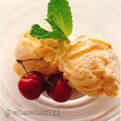 お砂糖なしバニラアイスクリーム