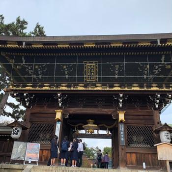 パフェとビールと紅葉の京都⑤ 北野天満宮の花手水