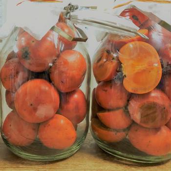 今日は地下鉄記念日*柿酢とシュトーレンの仕込み