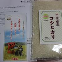 「千葉県産コシヒカリ」でスピード混ぜご飯☆ひじきご飯