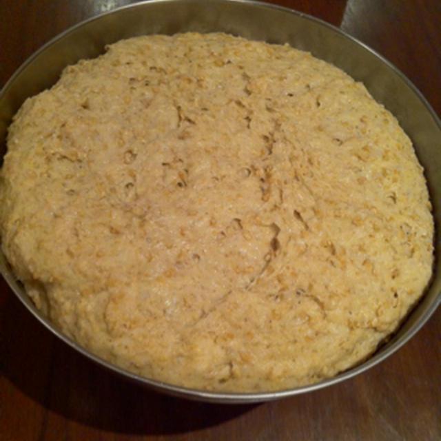 玄米酒粕パン完成!