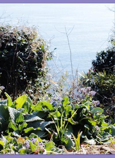 常立寺と江の島