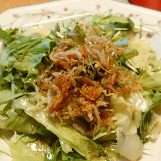 カリカリガーリックしらすのサラダとしゃぶしゃぶと小鉢5品で晩酌