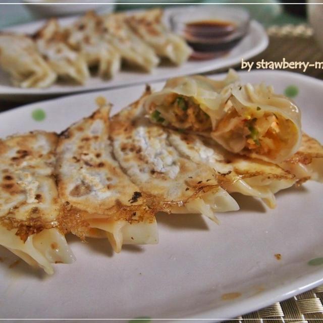 餃子2種類・白菜キムチチーズ餃子と普通の餃子