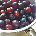 贅沢葡萄シロップ☆レシピをより簡単に。 by AKIKOさん