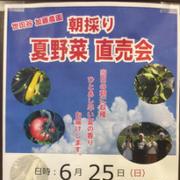 500円の馬丼10年ぶりに足を運びました。#熊本 にある #味の屋台村 #熊本空...