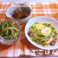 焼きキャベツのオランデーソース by Makoさん